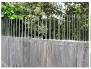 Thorny Devil Possum Spikes Fence Capping 500mm x 175mm high