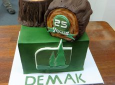 Demak Birthday Cake 25